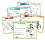 77 Öko-Spiele und -Projekte für Kita und Grundschule