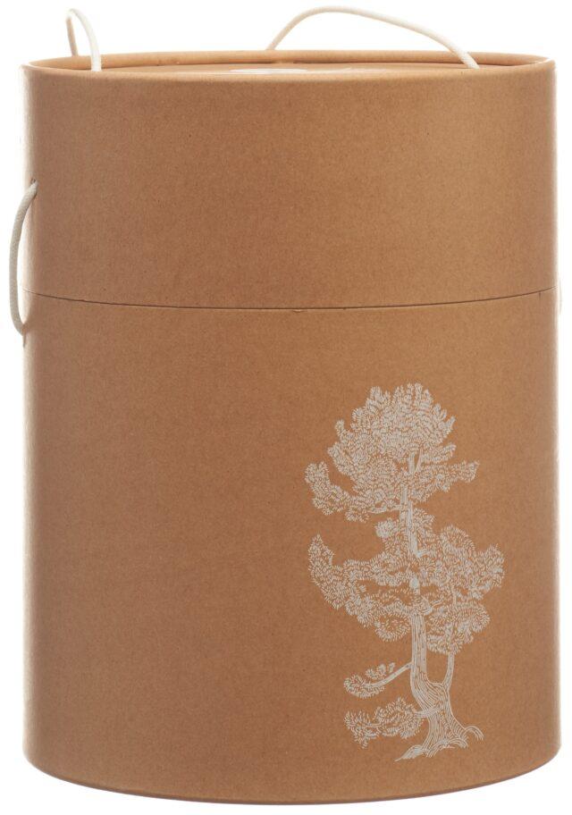 aromalife Pinus Cembra Duftholz Pine XL inklusiv ätherisches Öl & Späne (1 Stück)
