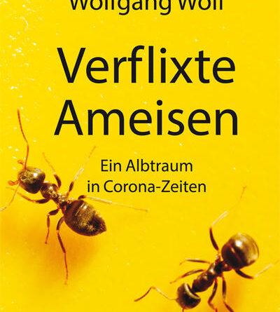 Verflixte Ameisen